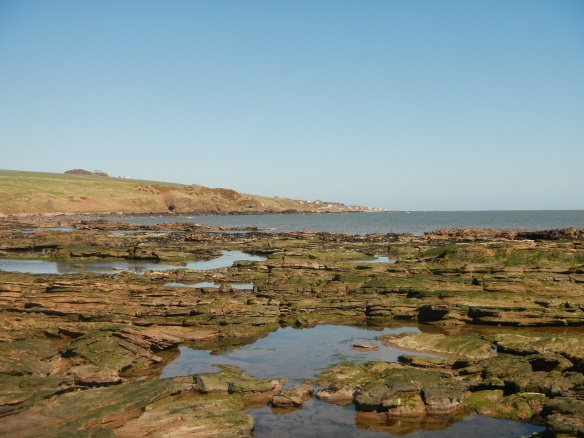 Shoreline at East Mathers