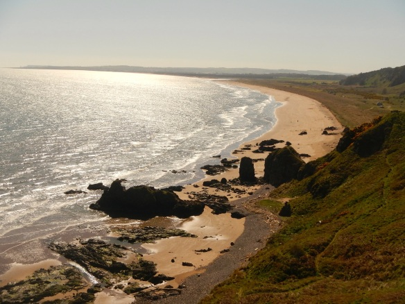 Looking south along St Cyrus beach from the Heughs of St Cyrus