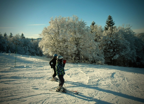 Two boys enjoying skiing through the sunlit snow-dusted forest