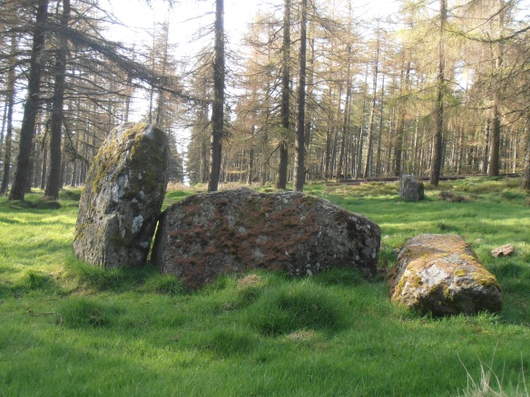 The recumbent stone and flankers (one fallen) of Nine Stanes Stone Circle